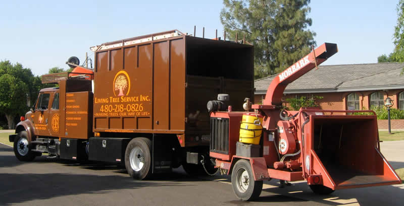 Living Tree Service truck and chipper